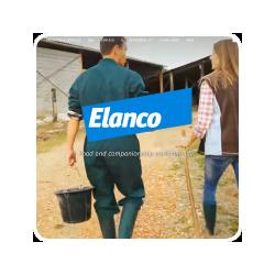 Voor Elanco heeft Pressrecord een landelijke campagne georganiseerd om honden en katteneigenaren het belang van het ontwormen van hun huisdier onder de aandacht te brengen.